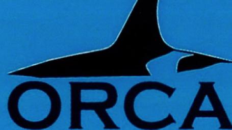 Orca Bridge